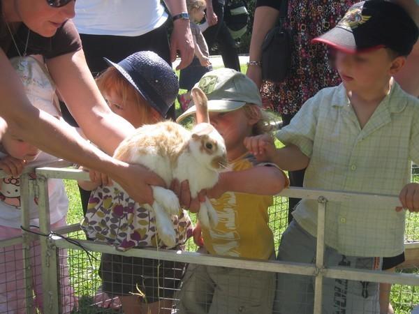 Jeannot: le lapin de Tiligolo