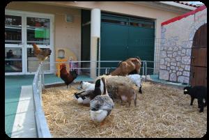 La ferme de Tiligolo dans les creches