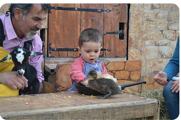 Un jeune enfant decouvre les animaux de la ferme